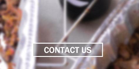 contact-us-quad-border.jpg